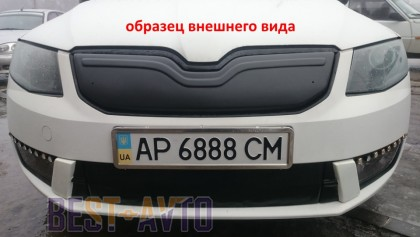 Зимняя заглушка на решетку радиатора Skoda Rapid 2012- (бампер низ)