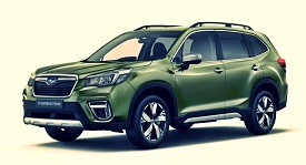 Forester 2019-